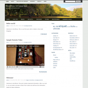 screenshot of CountrySide WordPress-theme